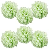 grape decorations set - WYZworks Set of 6 - GRAPE GREEN 10