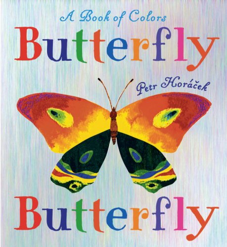 Butterfly Book Colors Petr Horacek product image