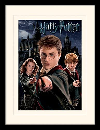 Harry Potter - Harry Ron Hermione Póster De Colección ...