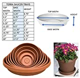 Bloem Terra Plant Saucer Tray for Planters