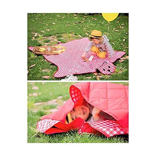 ピクニックブランケット 父親のマシン洗えるピクニックマットポータブル防湿パッド屋外キャンプパッドビーチマットクロールマットセット (色 : B07R3R79KP