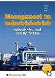 Management im Industriebetrieb, Band 2: Wirtschafts- und Sozialprozesse