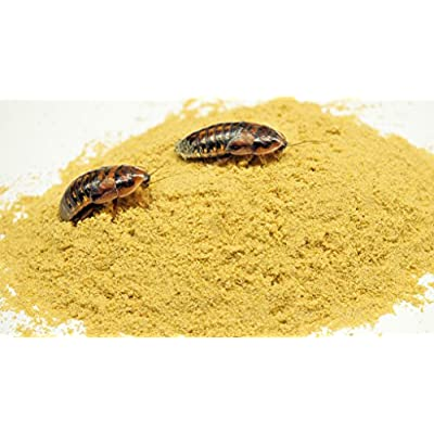 Thefeederfarm Roach Chow Super Honey Mix 2 lbs. High Protein Food for Dubia and Crickets!