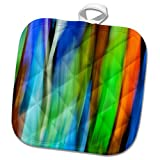 3dRose Danita Delimont - Abstracts - A motion blur of a stain glass window. - 8x8 Potholder (phl_276400_1)