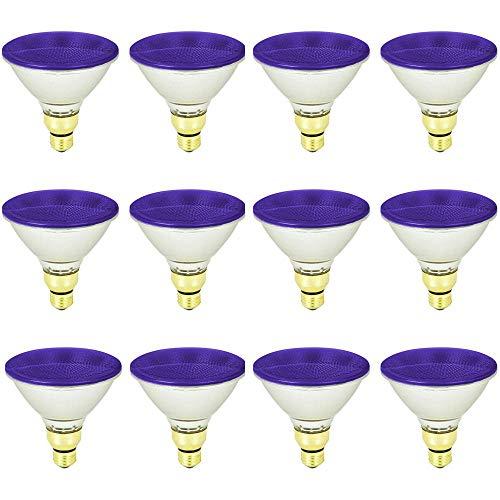 90 Watt Par38 Purple Halogen Flood Light Bulb