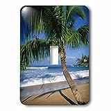 3dRose LLC lsp_89649_1 Napili Beach Maui Hawaii Us Us12 Dpb0803 Douglas Peebles Single Toggle Switch