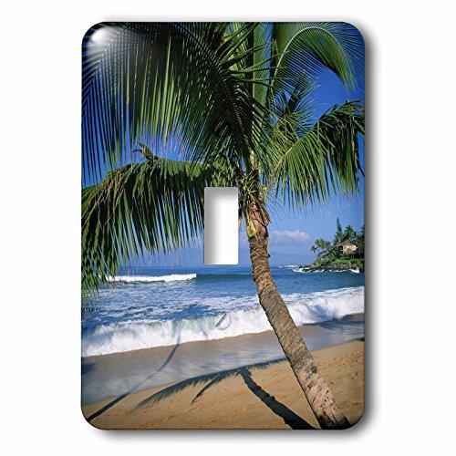 3dRose LLC lsp_89649_1 Napili Beach Maui Hawaii Us Us12 Dpb0803 Douglas Peebles Single Toggle Switch by 3dRose