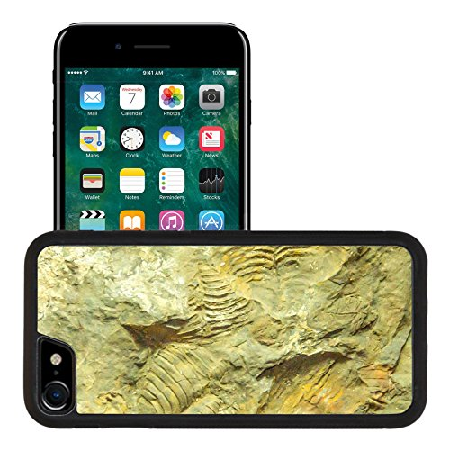 Liili Apple iPhone 7 iPhone 8 Aluminum Backplate Bumper Snap iphone7/8 Case iPhone6 IMAGE ID 33254568 Fossils of brachiopods oldhamina