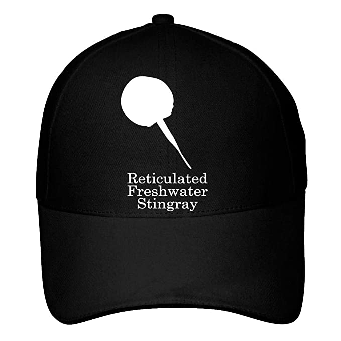 Stingray Silhouette