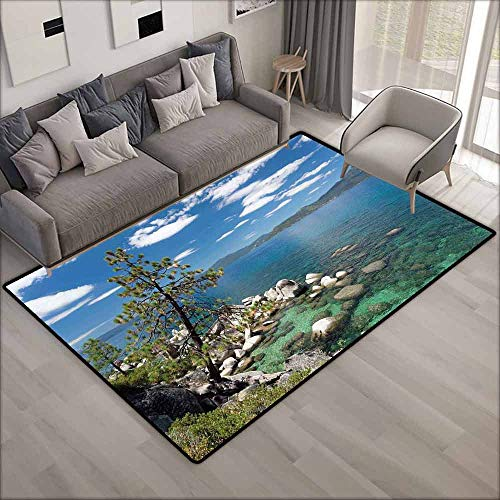 - Large Door mat,Nature,for Outdoor and Indoor,4'11