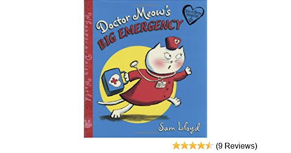 Doctor Meow's Big Emergency (Whoops-a-Daisy World Series