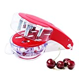 Best Olive Stoners - Olive & Cherry Pitter - Multiple Fruit Remover Review