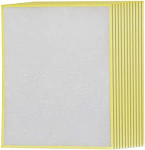 Winix 1712-0094-00 Air Purifier Replacement Filter U, White, Pack of 12