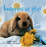 Bunnies at Play, Sophie Bevan, 1841726168