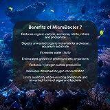 Brightwell Aquatics MicroBacter7 - Bacteria & Water