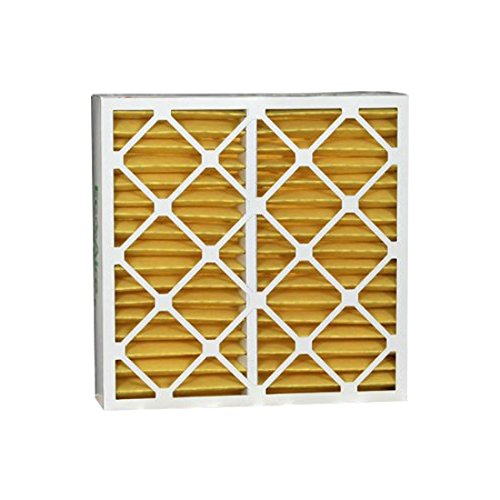 Eco-Aire P15S.041622 MERV 11 Pleated Air Filter, 16 x 22 x 4""