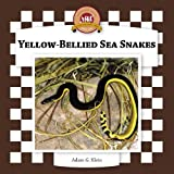 Yellow-bellied Sea Snakes (Snakes Set II)