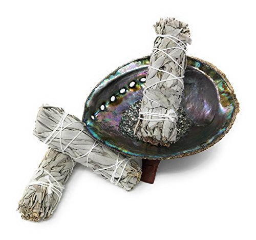 smudge-kit-large-abalone-shell-wooden-stand-three-white-sage-smudge-bundles
