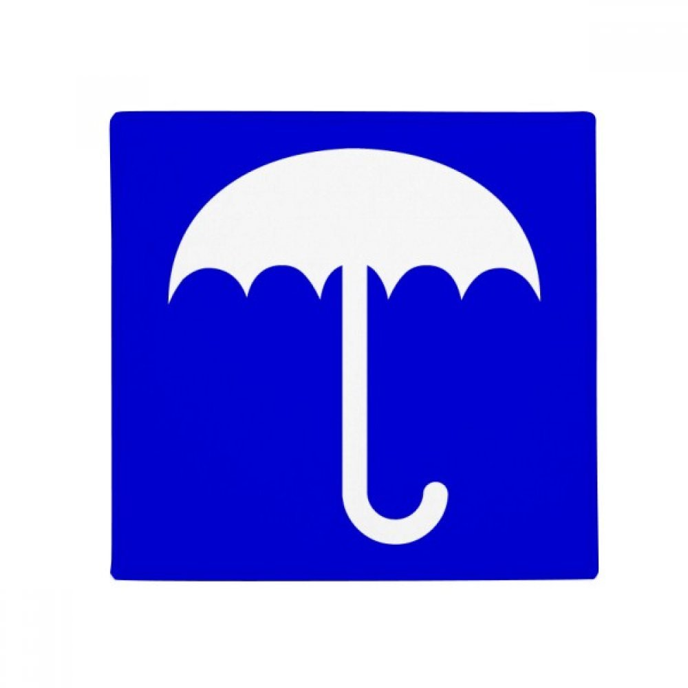 DIYthinker Rain bluee Square Warning Mark Anti-Slip Floor Pet Mat Square Home Kitchen Door 80Cm Gift