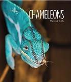 Living Wild: Chameleons, Melissa Gish, 0898128382