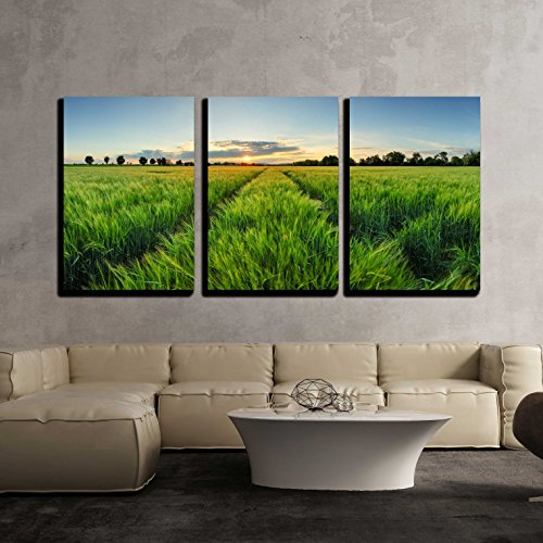 Sunset over Wheat Field with Path x3 Panels