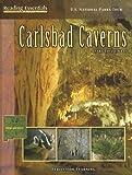 U.S. National Parks Tour: Carlsbad Caverns (Reading Essentials in Social Studies)