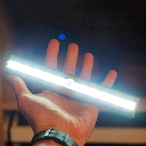 Fiber Optic Light Pipe Led in US - 2
