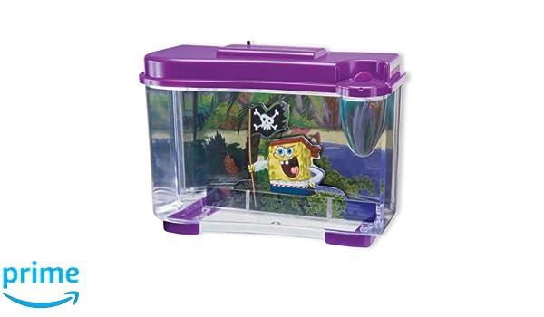 Penn-Plax sbk105 3d bob esponja pirata Acuario: Amazon.es: Productos para mascotas