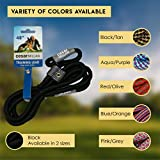 Cesar Millan Slip Lead Leash - Slip Collar Training Lead Gives You Greater Control The Ability to Make Quick Gentle Corrections