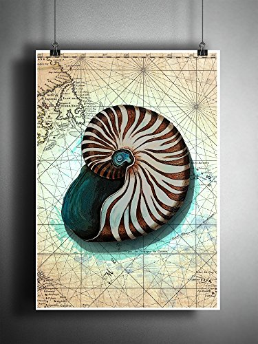 Nautilus shell splatter art, beach decor seashell art print on world - Seashell Map