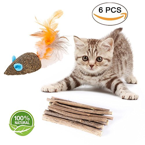 YOOPET Cat Catnip Sticks Natural Matatabi Silvervine Sticks - Cleaning Teeth Molar Tools Kitten Cat Chew Toy – with Free Gift Natural Catnip Mouse Cat Toy (6 PCS)