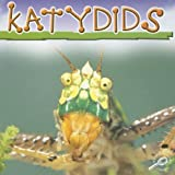 Katydids, Jason Cooper, 1595154272