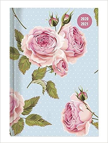 Giornaliera 352 pagine Alpha Edition Diario Agenda Scuola Collegetimer 2020//2021 Rose Formato 10x15 cm