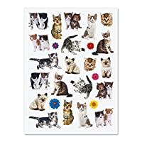 Current Kittens Stickers - 50 stickers