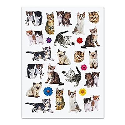 Cat Fan related Products CURRENT Kittens Stickers – 50 Stickers [tag]