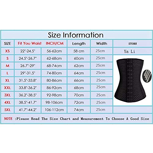 Buy camellias women's waist trainer belt - waist training corset waist