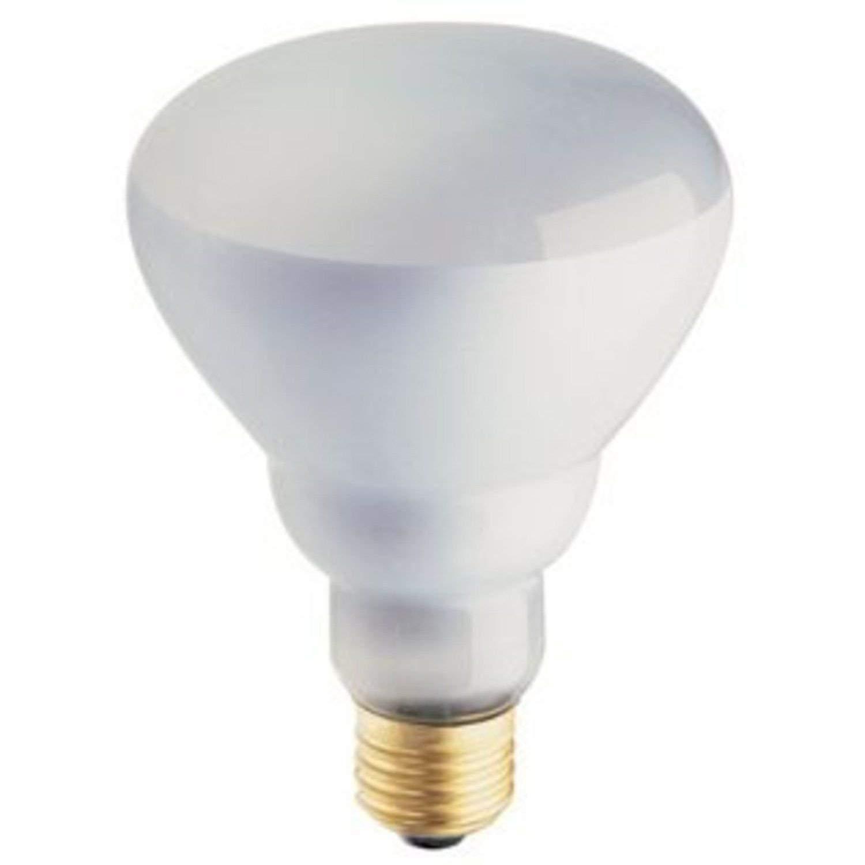 Philips Phillips Soft White 65-Watt BR30 Indoor Flood Light Bulb, (12 Pack)