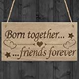 Born Together Friends Forever Twins Keepsake Gift Hanging Plaque Family Sign
