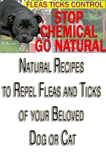 Natural Recipes To Repel Fleas and Ticks From Your Beloved D