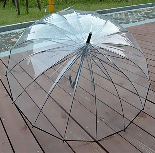 Sencillo paraguas transparente con 16 varillas de acero y apertura automática.
