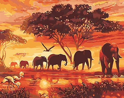 WONZOM Pintura por Numeros Kits 16 20 Pulgadas para Adultos Ninos DIY Pintura al oleo sobre Lienzo con Pinceles y Acrilica Pinturas Elefante Animales Sin Marco