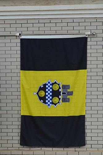 Flag City Pittsburgh (Fyon Large Flag City of Pittsburgh Flag 3X5Ft)