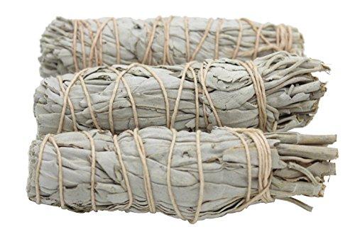 Govinda Premium California White Sage Smudge Sticks, 4 Inch Long, Pack of 3 - incensecentral.us