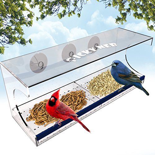 Window Bird Feeder with Removable Tray and Drain Holes for Garden, Porch or Apartment - Complete Kit with 3 Extra Suction Cups - Large, & Transparent for Wild Bird Watching - Easy Installation