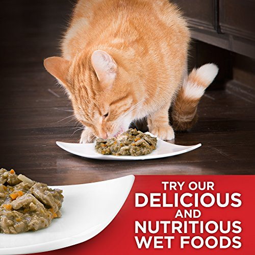 Hill's Science Diet Kitten Food, Healthy Development Chicken Recipe Dry Cat Food, 7 lb Bag by Hill's Science Diet (Image #12)