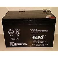 TOYO/CASIL 12 Volt 12 AMP RECHARGEABLE BATTERY