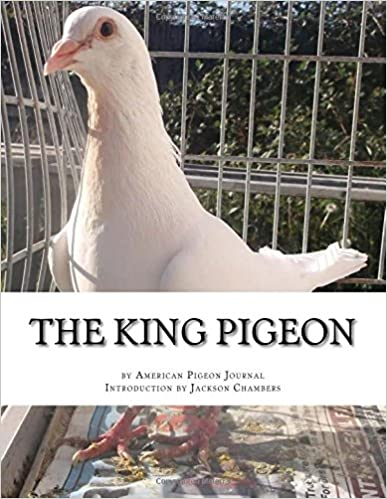 The King Pigeon
