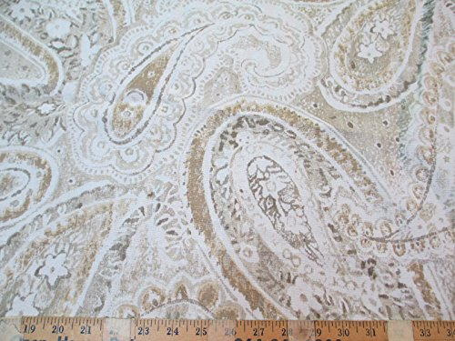 Paisley Chic (Richloom Fabric Upholstery Drapery Stanton Glacier Shabby Chic Paisley MM46)