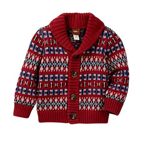 Tea Collection Boys Sweater - 4