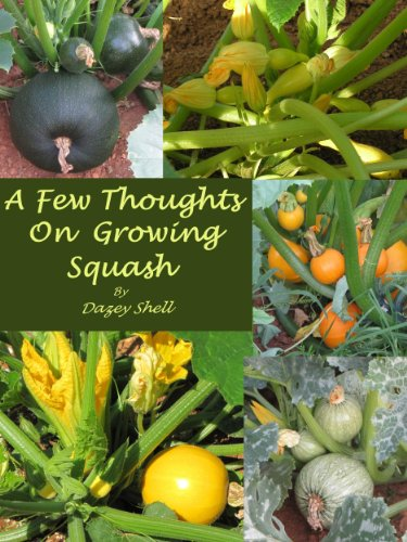Squash Vine - 5